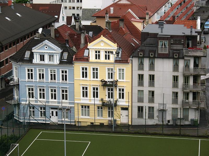 mini soccer field